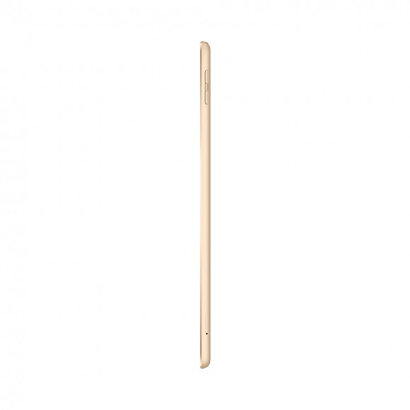 iPad Wifi  Cell Gold 2